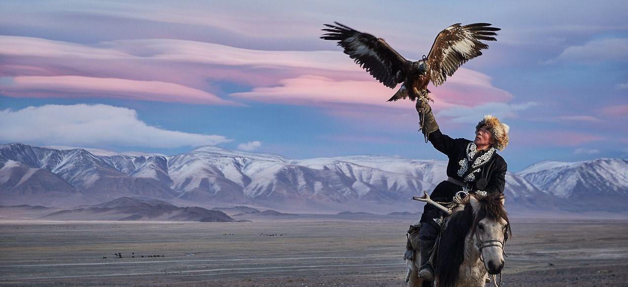 mongol aigle cheval (2)